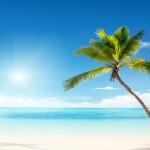 zon-seizoensafsluiting